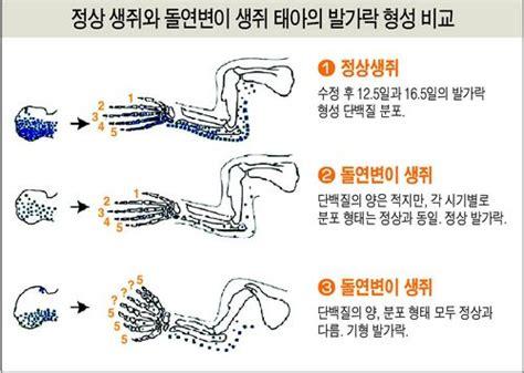萬事休矣-人生第一之樂 : 손가락 5개 유전자