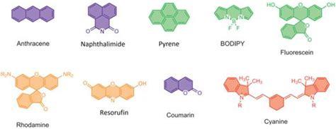 Fluorescent Sensing of Fluoride in Cellular System