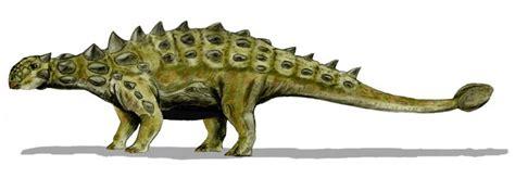 (공룡백과) 유오플로케팔루스