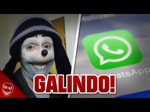 N'ajoute jamais JONATHAN GALINDO sur whatsapp (vraiment