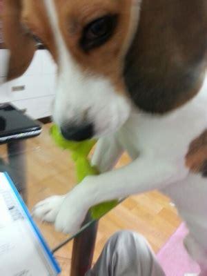 11탄+수정^^;) 야롱이의 야매 뷰티 클래스 : 네이트판