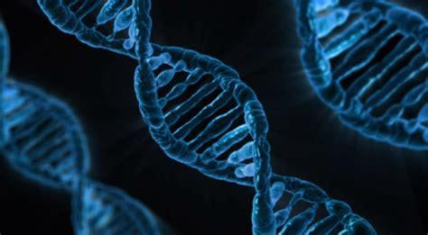 BMC Molecular Biology: 2016 in review - BMC Series blog