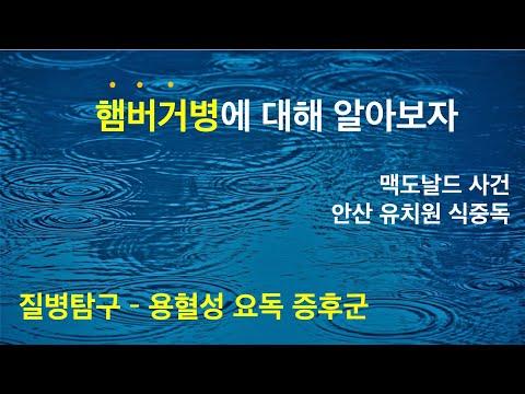 식품위생학 ) 소위 햄버거 병이라 일컬어지는 용혈성 요독