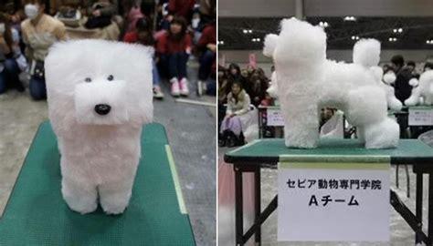 일본 강아지 미용대회에서 우승한 '마인크래프트' 멍멍이