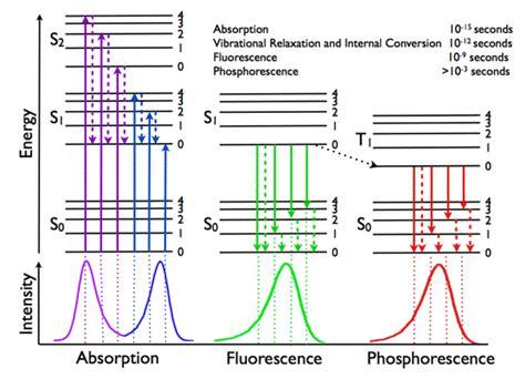 Frequency-Domain FLIM: Basic Equations — Lambert Instruments