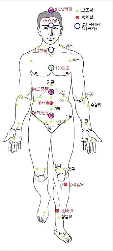 인체경혈도 혈자리(손혈자리 발혈자리 건강혈자리 ) : 네이버