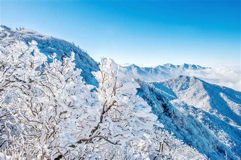 """""""눈의 꽃 보러 가자"""" 설경이 아름다운 겨울 여행지 & 겨울 산행"""