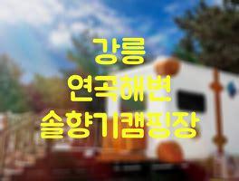 강릉 경찰수련원 카라반 솔향오토캠핑장 시설 예약 정보