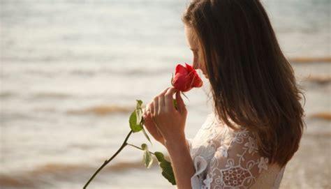오늘(14일) 로즈데이…색깔별로 보는 장미꽃의 꽃말 8개 - 인사이트