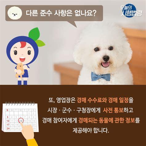 [10/4 시행법령] 동물보호법 시행규칙, 동물 경매 관련 법령