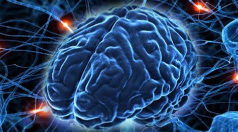 사이코패스의 뇌구조는 다르다?